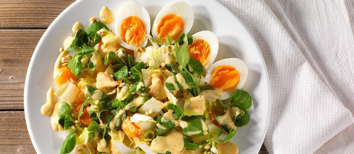 Chicorée-Eier-Salat mit Mandarinen und Cashewkernen - BCM Diät Rezepte.ch